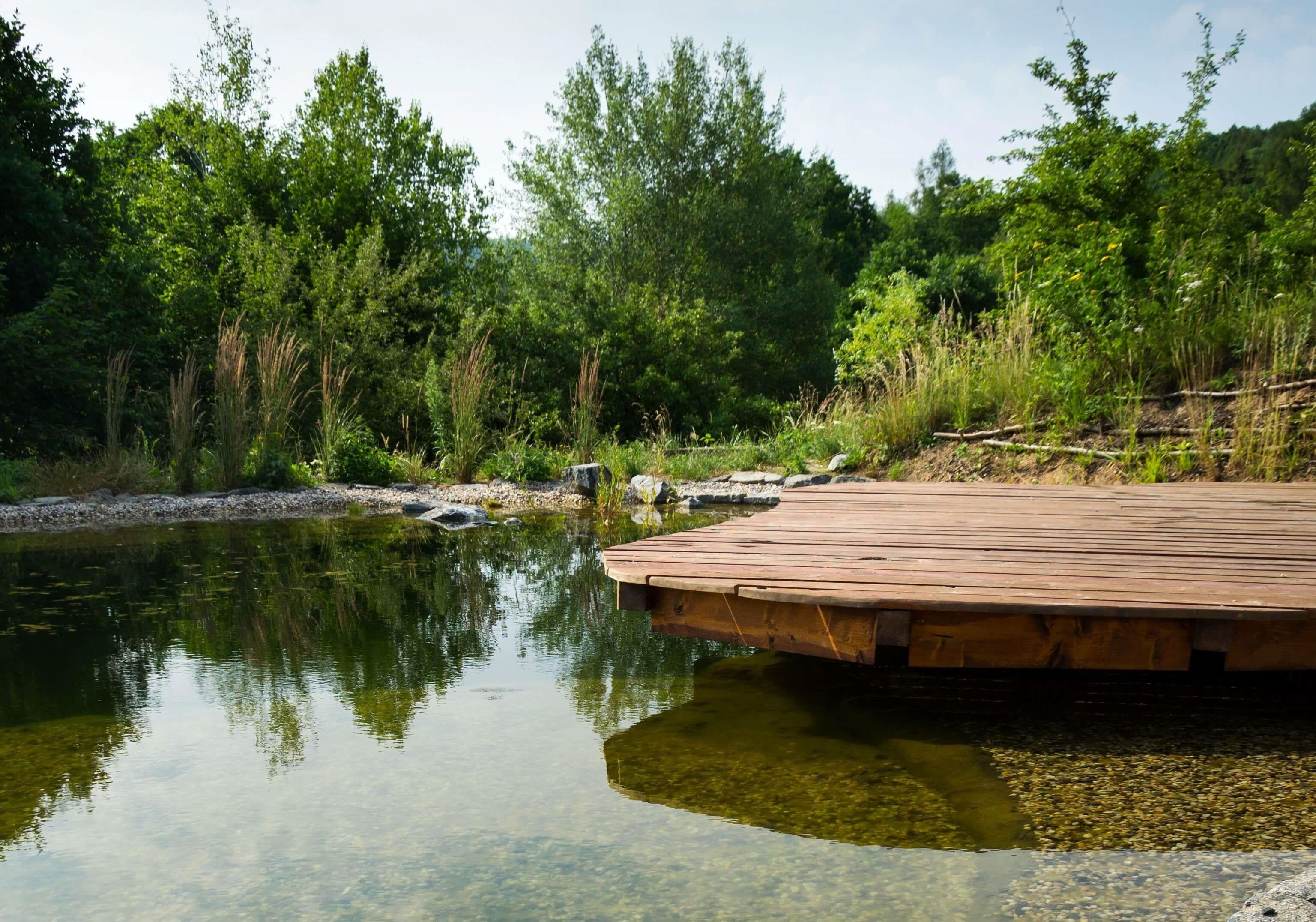 Správná údržba zahradního jezírka zahrnuje profesionální čištění.