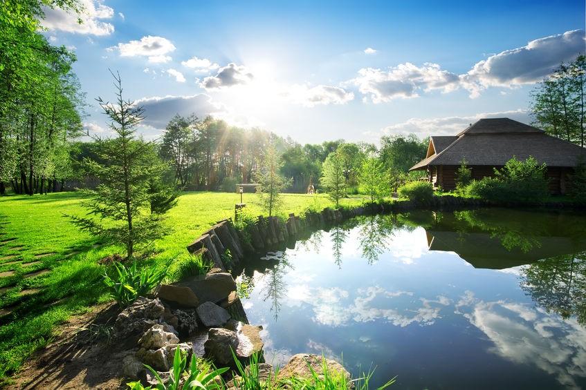 Pozor na stoupání pH vody v zahradním jezírku.